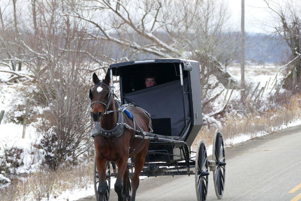 Junger Amish auf sonntäglicher Ausfahrt