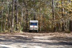 Übernachungsplatz im Wald
