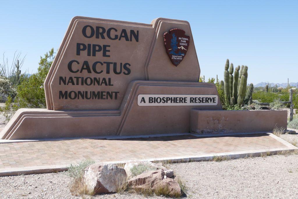 Organ Pipe Cactus Park.jpg