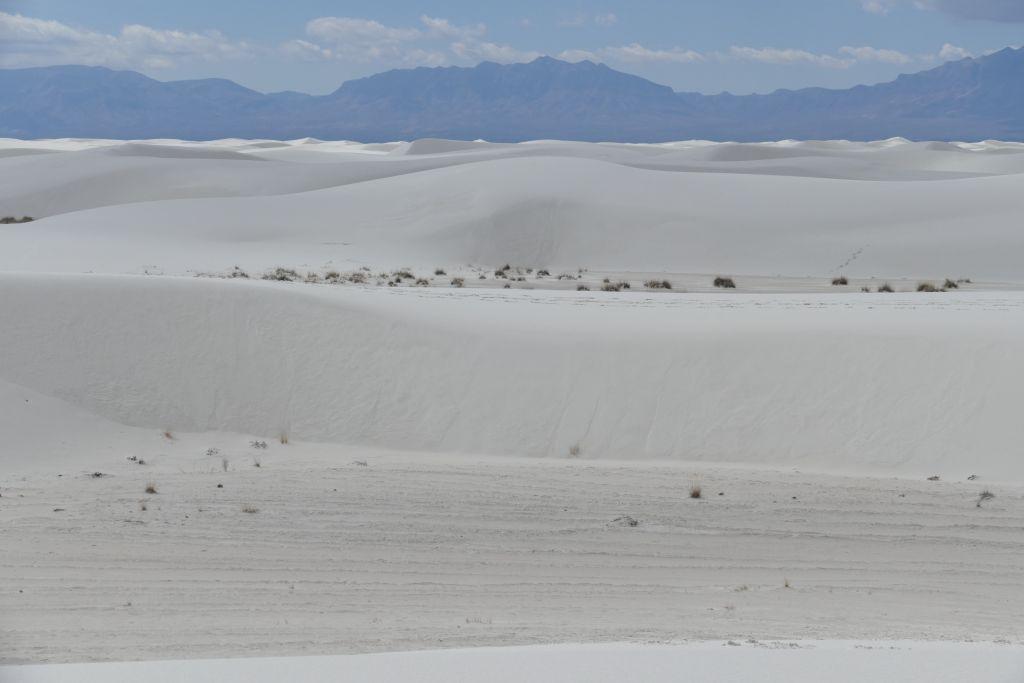 White Sand2.jpg
