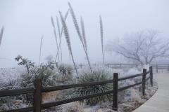 Tropische Winterlandschaft 1.jpg