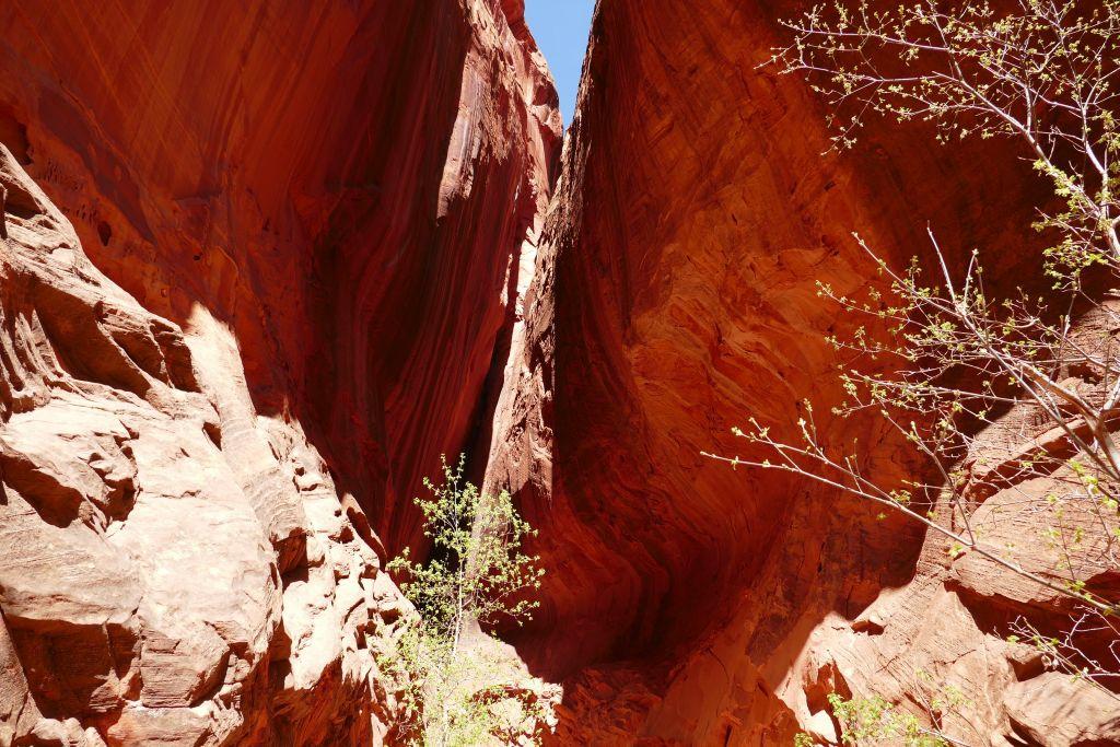 Burr Trail 3.jpg