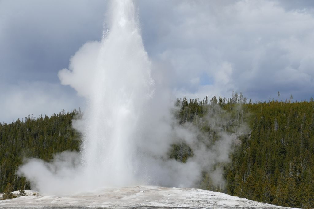 Old Faithful 1.jpg