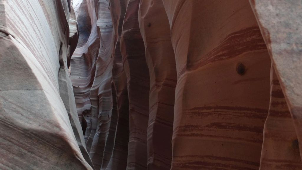 Zebra Canyon 12.jpg