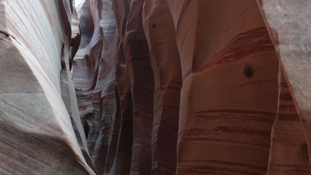 Zebra Canyon 12.jpg