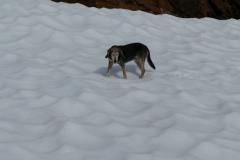 Larissa im Schnee 1