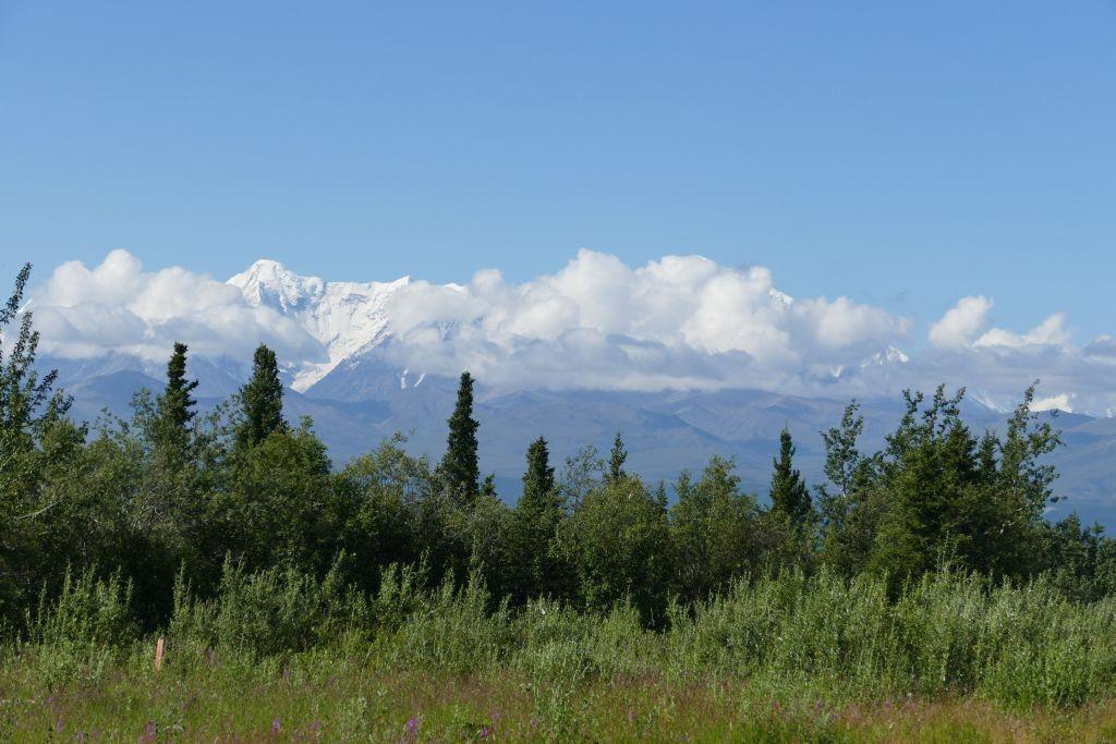 Alaska Range vom Denali Hwy 2