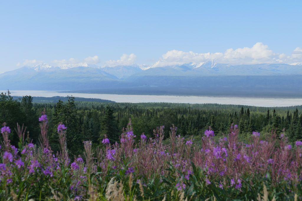 Alaska Range vom Denali Hwy 4