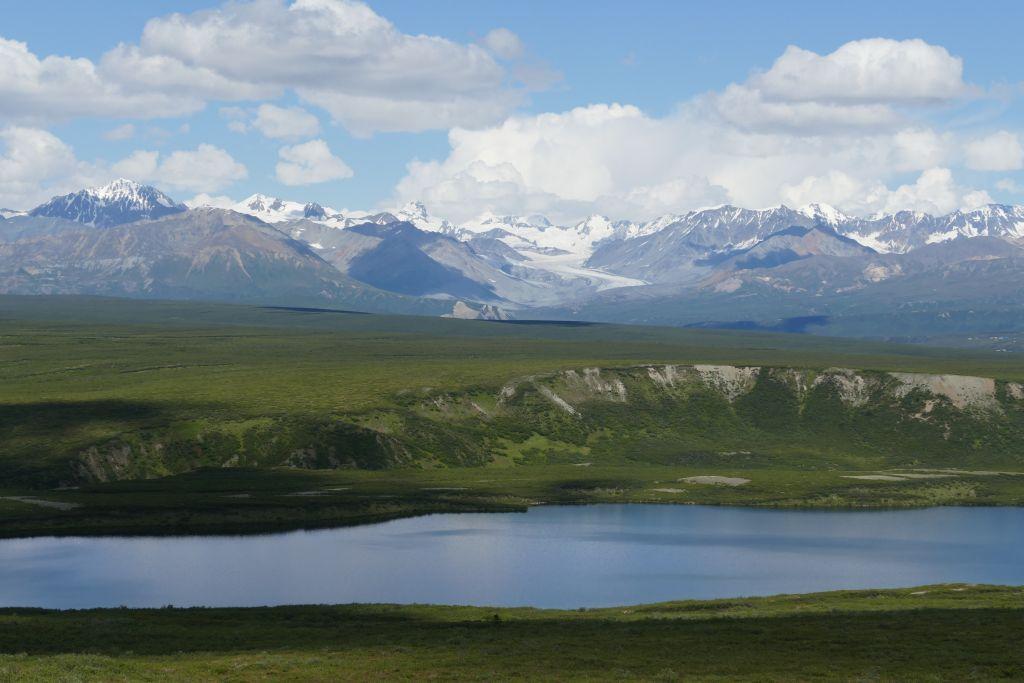 Alaska Range vom Denali Hwy 7