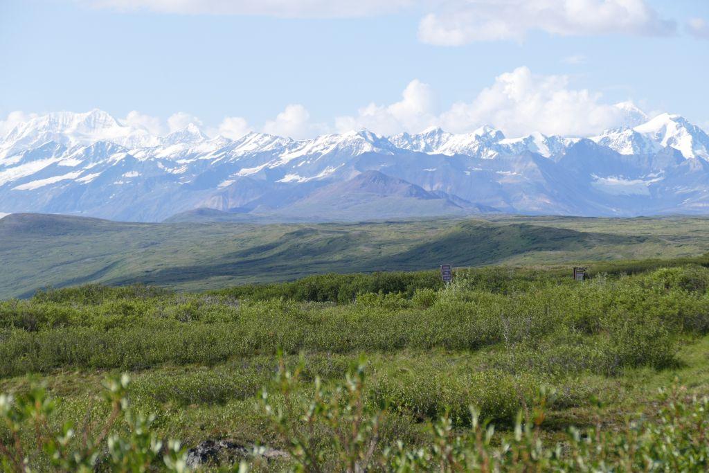 Alaska Range vom Denali Hwy 8