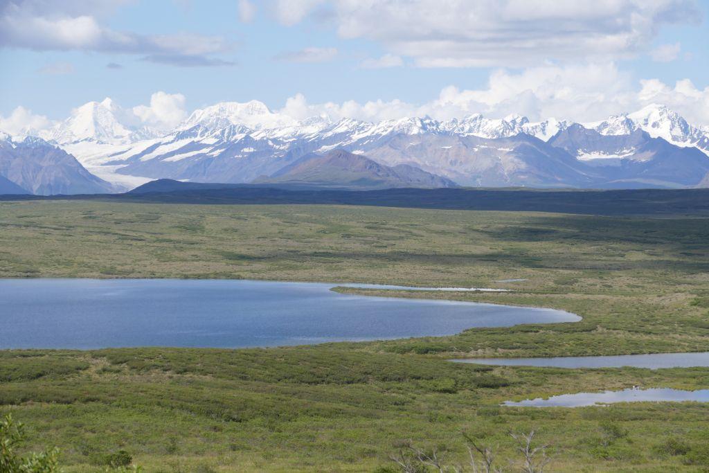 Alaska Range vom Denali Hwy 9