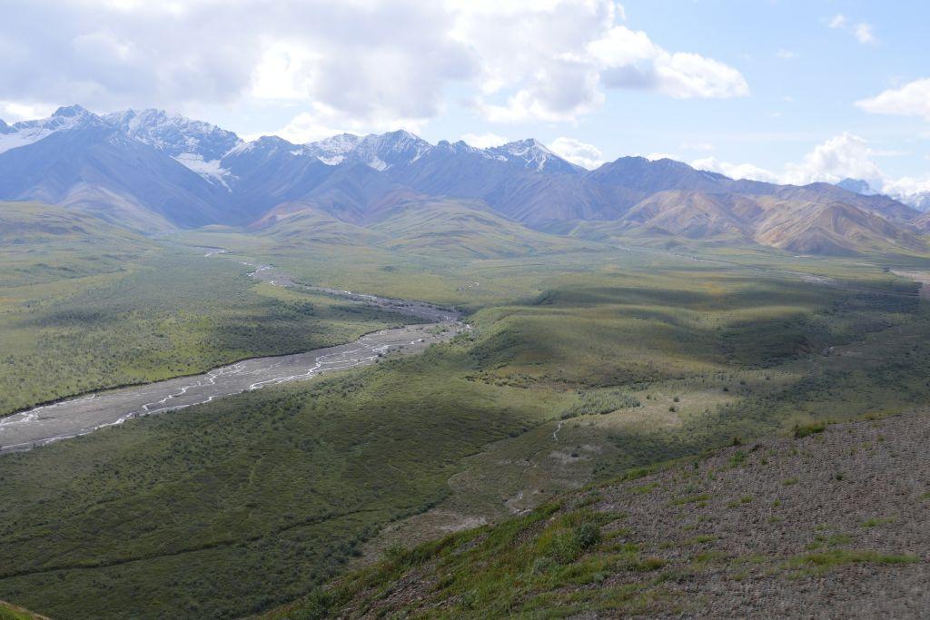 Denali Landschaft 1