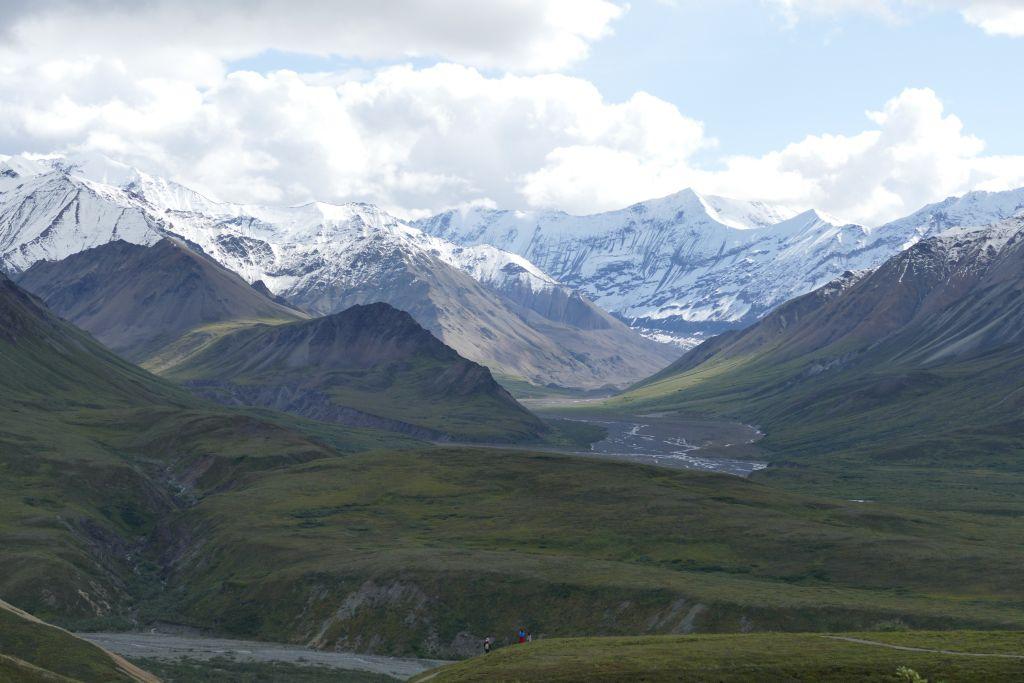Denali Landschaft 2