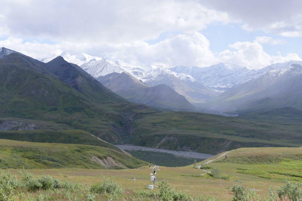 Denali Landschaft 3