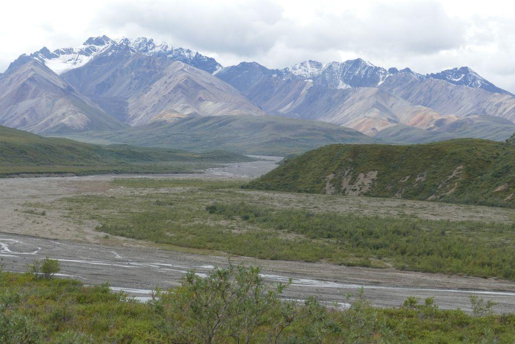 Denali Landschaft 5
