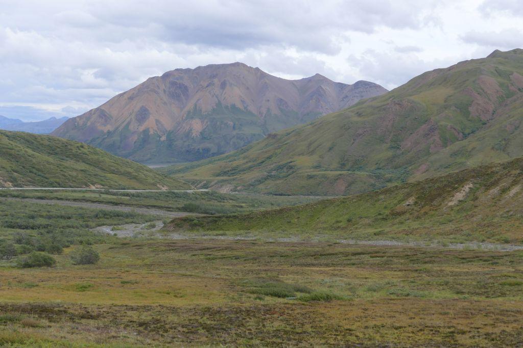 Denali Landschaft 8