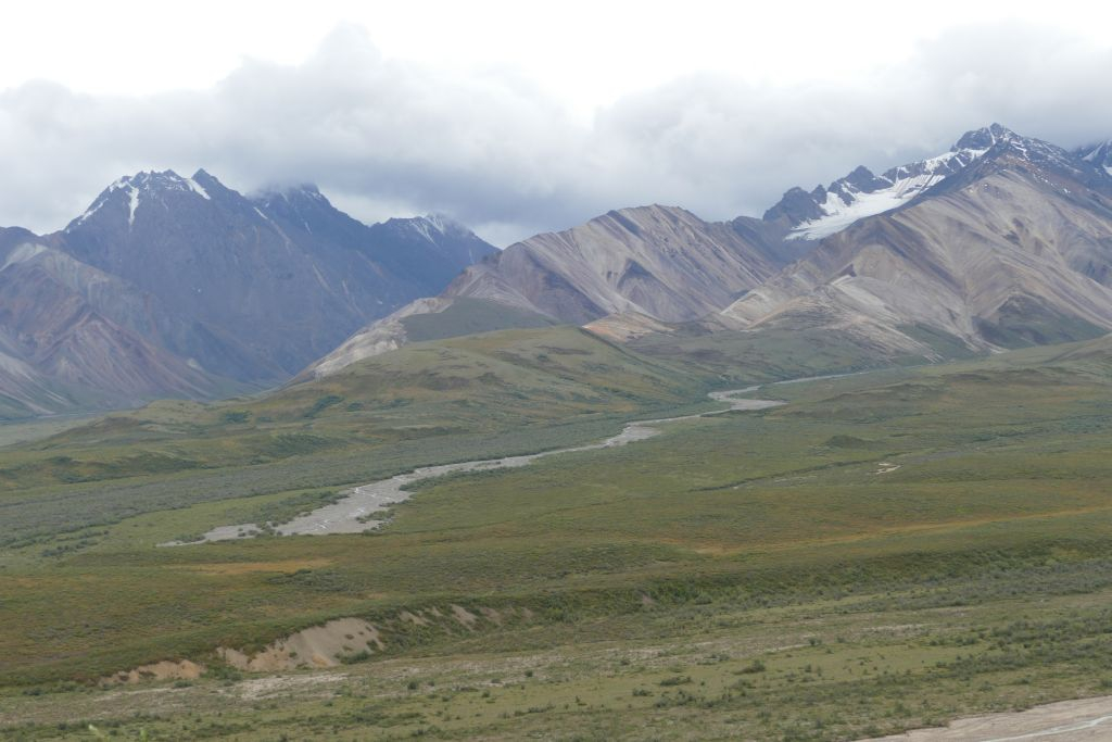 Denali Landschaft 9