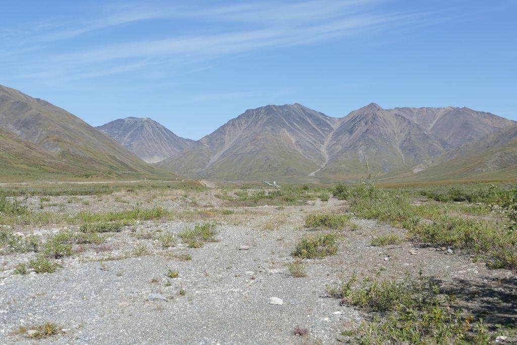 Richtung Atigun Pass 5