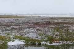 Dalton Hwy mit Schnee 1