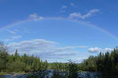 Regenbogen bei Sonnenschein