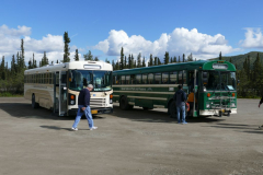 Shuttle und Tour Bus im Denali