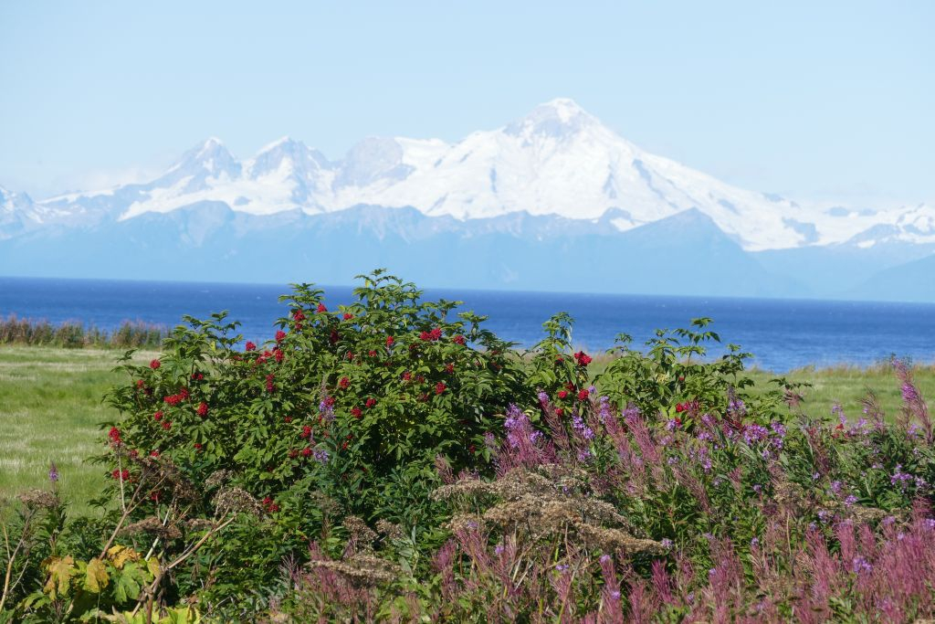Berge an Cook Inlet 2