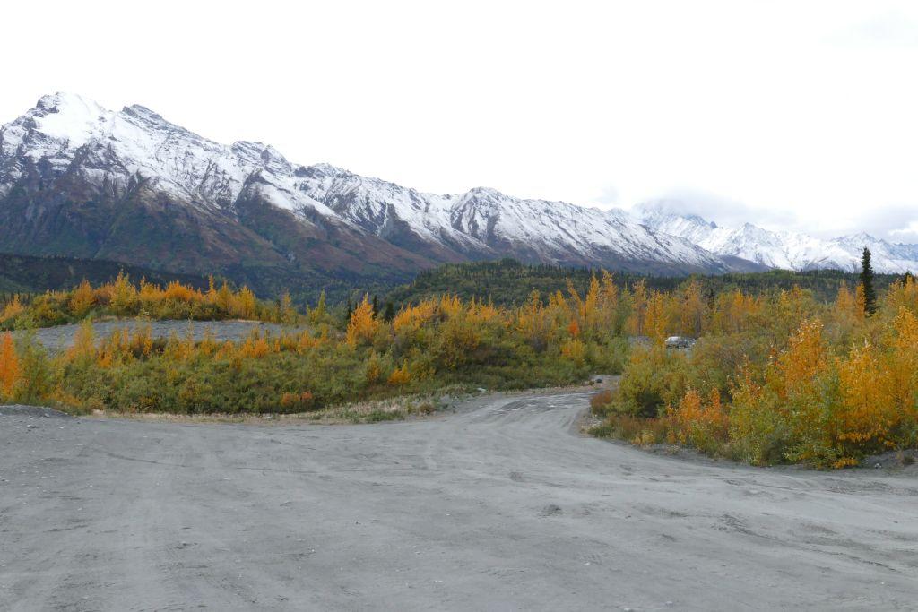 Herbstwald mit Schneeberge 1