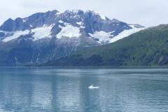 Gletscher Prince William Sound 2