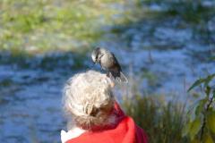 Vogel Yarger Lake 3