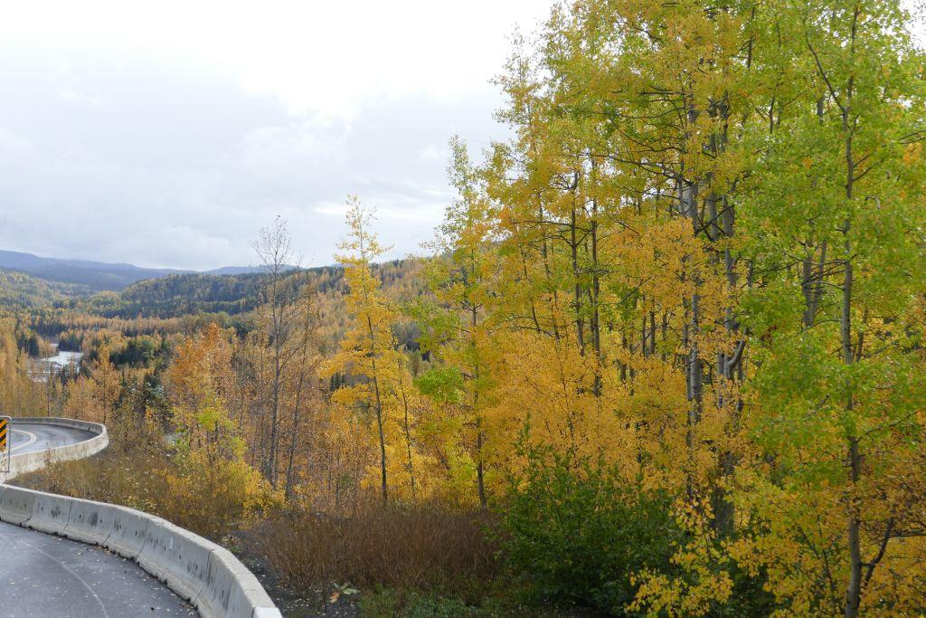 Cassiar im Herbst 3