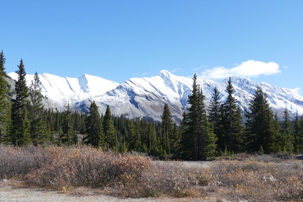Icefield Parkway 5