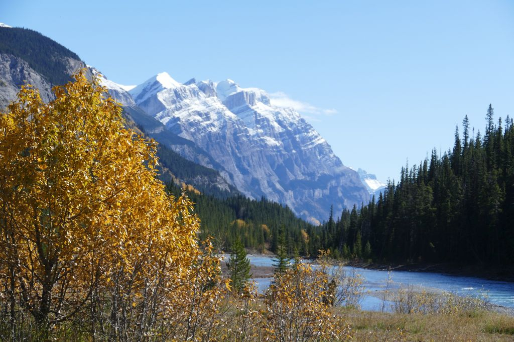 Icefield Parkway 8