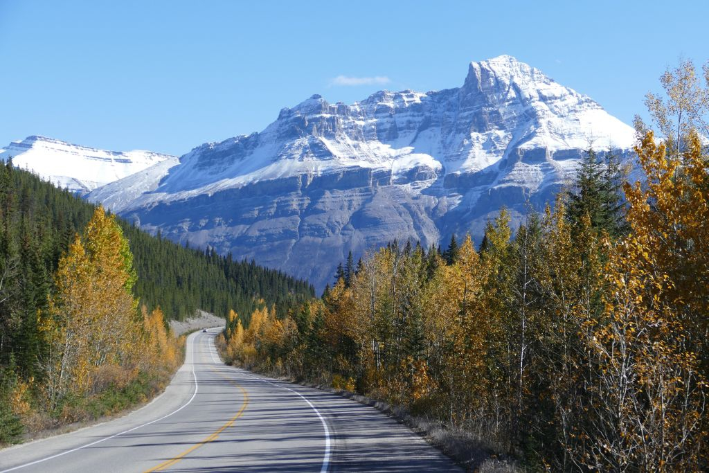 Icefield Parkway 9