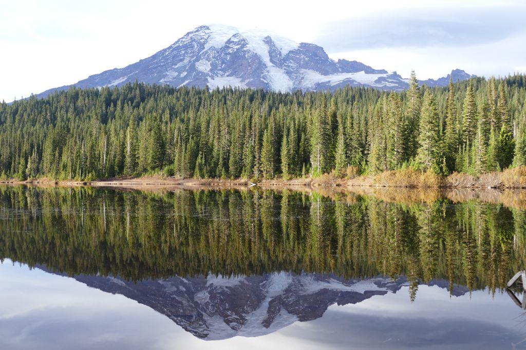 Mt Rainier mit Spiegelbild