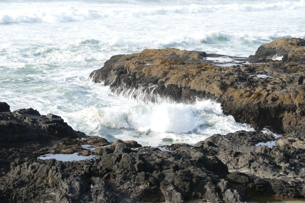 Wilde Küste Oregon 4