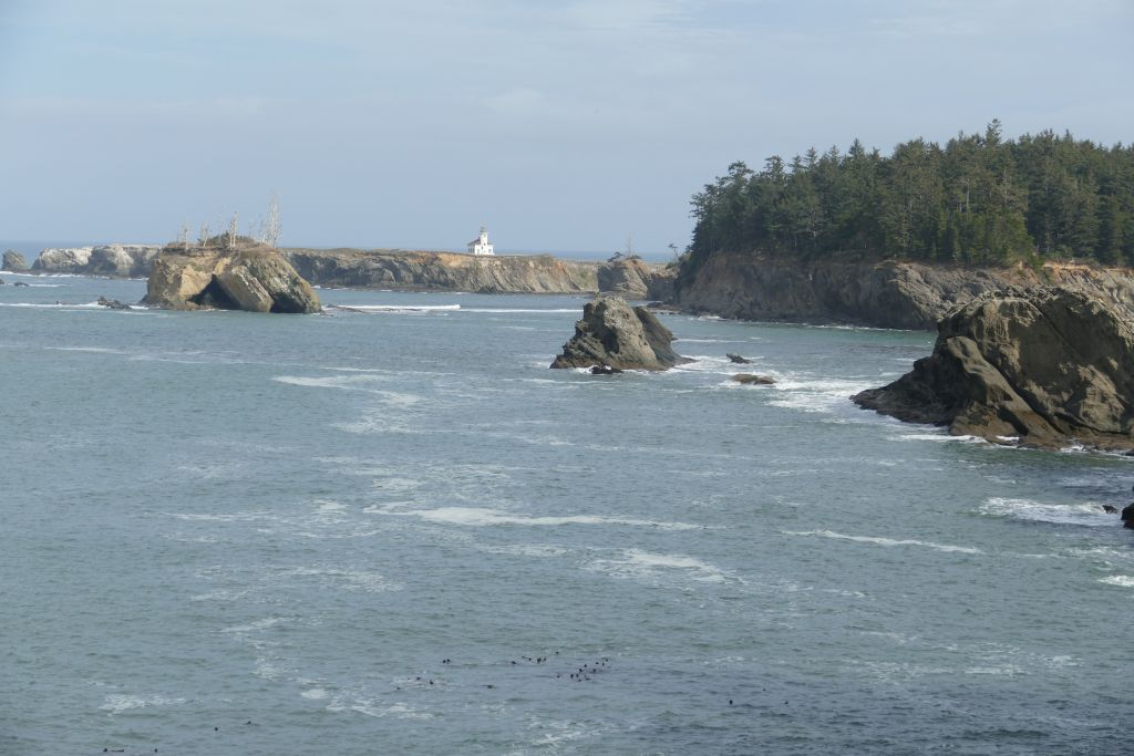 Wilde Küste Oregon 8