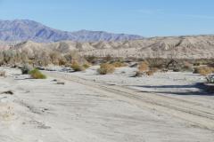 Wüste im Anzo-Borrego SP