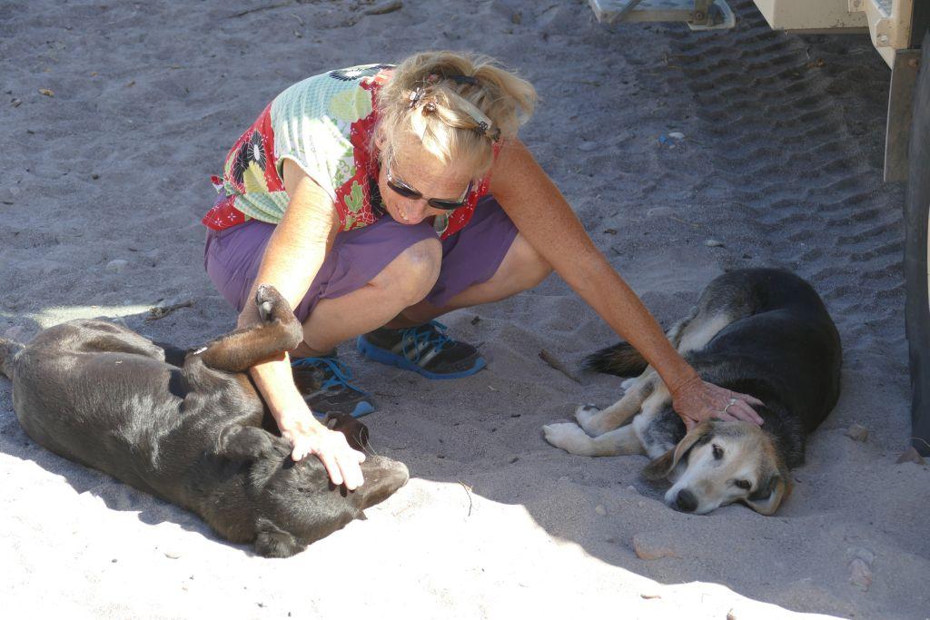 Esther mit Hunden