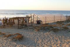 Camp Wasserschildkröten Treibhaus
