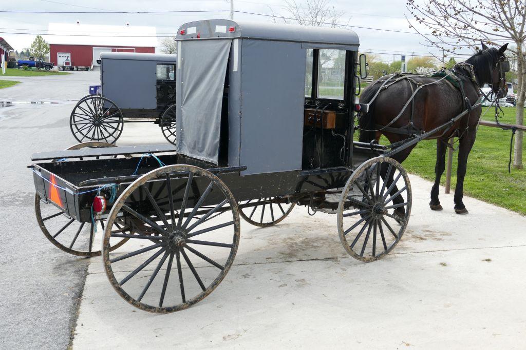 Amish Kutsche als Pickup für Einkauf