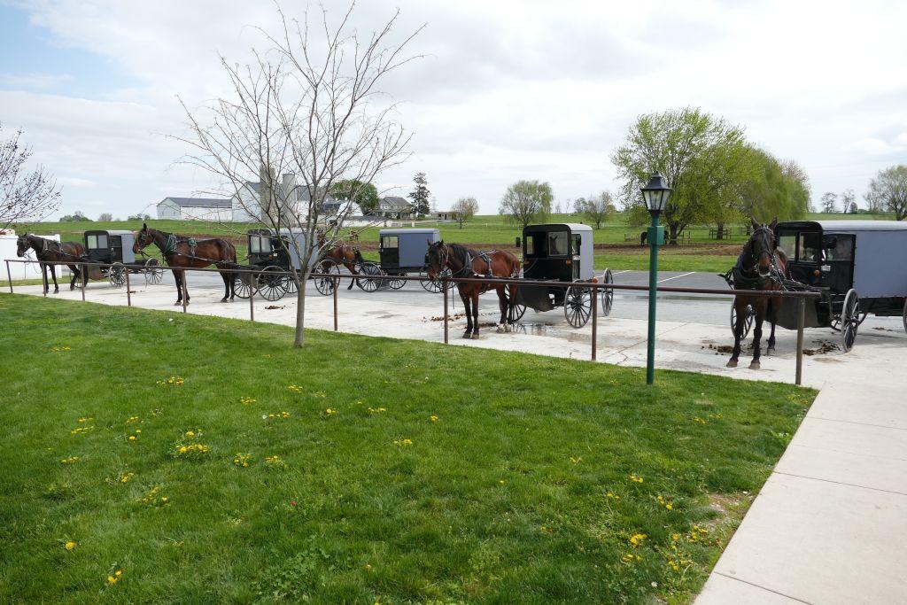 Amish Kutschen auf Parkplatz vor Einkaufsladen
