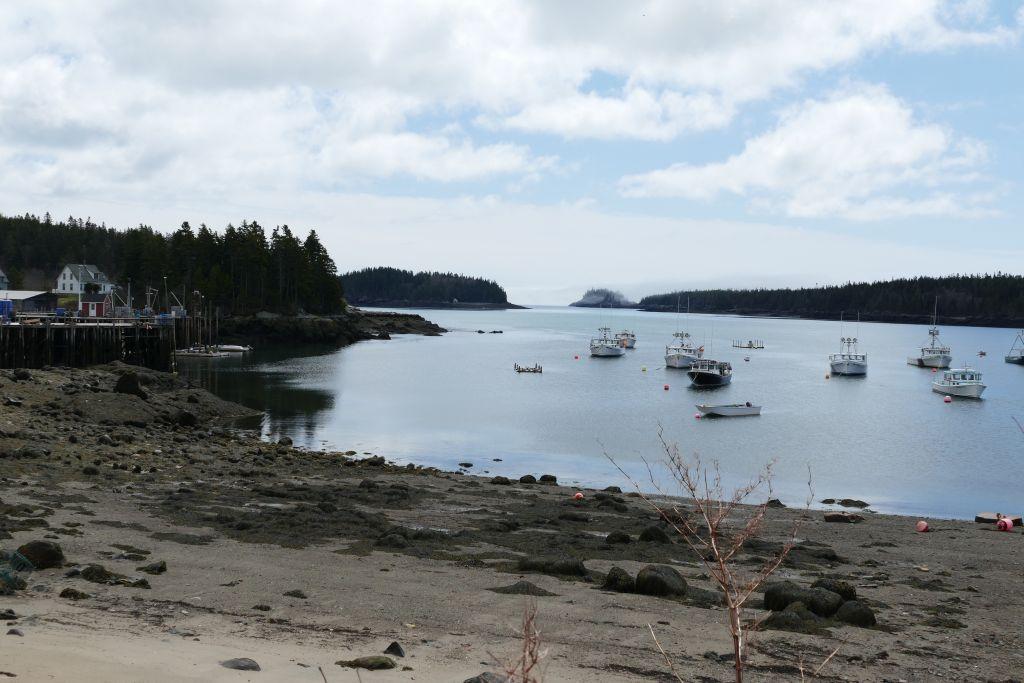 Meerebucht in Maine