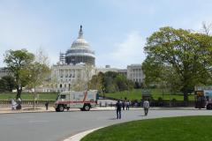 Capitol mit Bär 2