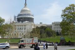 Capitol mit Bär 1